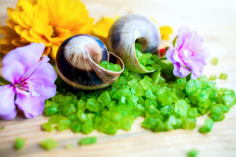 Sal verde para aromatherapy imagen de archivo libre de regalías