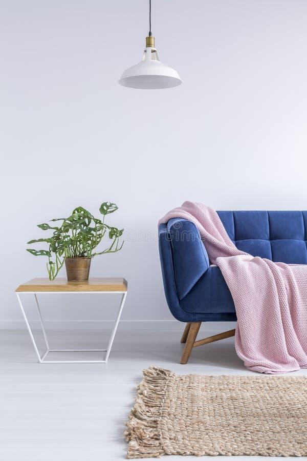 Sala bonita com sofá azul foto de stock royalty free