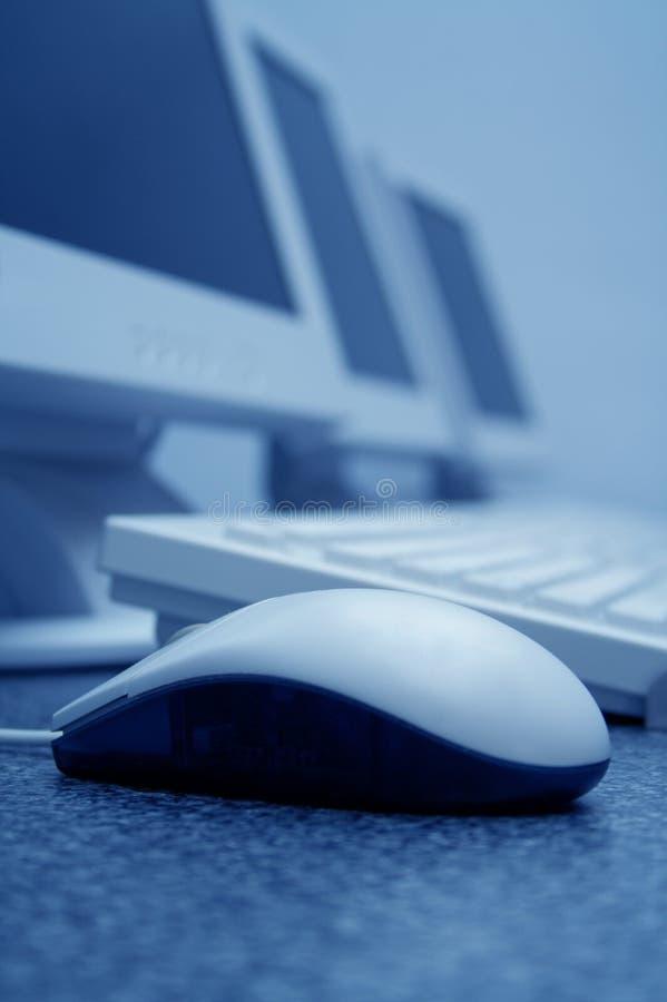 Sala de aula do treinamento de computador: Azul do rato fotos de stock royalty free