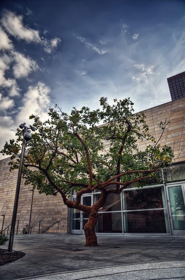 Sala de concertos de Los Angeles fotos de stock royalty free