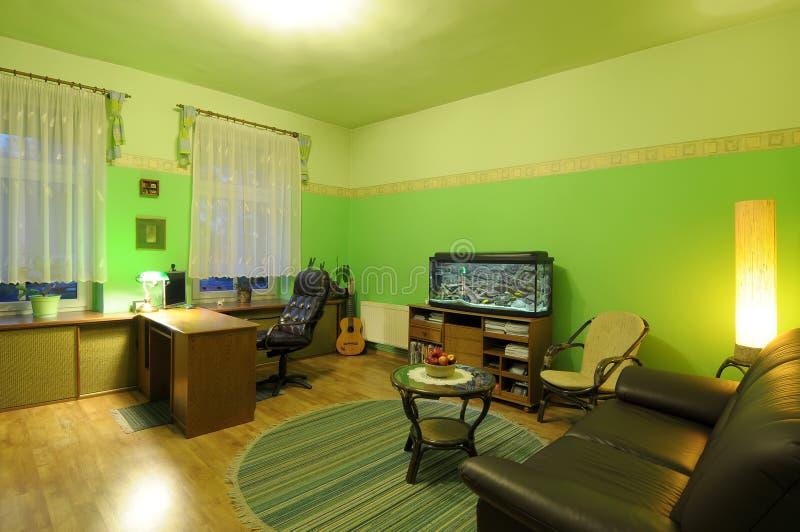 Sala de estar de la cal fotografía de archivo libre de regalías