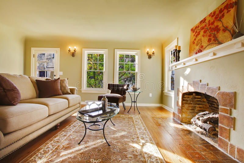 sala de estar de lujo europea con la chimenea vieja