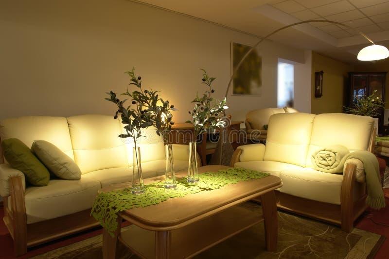 Sala de estar moderna cómoda imágenes de archivo libres de regalías