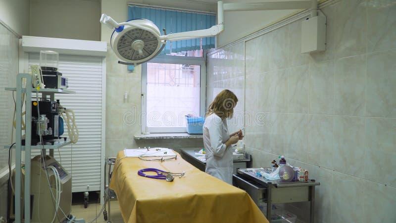 Sala de operações veterinária imagem de stock royalty free