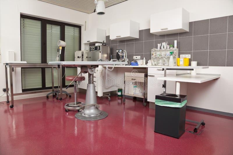 Sala de operaciones en una práctica veterinaria imagenes de archivo