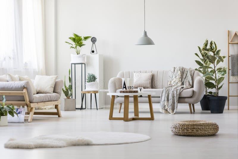 Sala de visitas com dois sofás imagens de stock royalty free