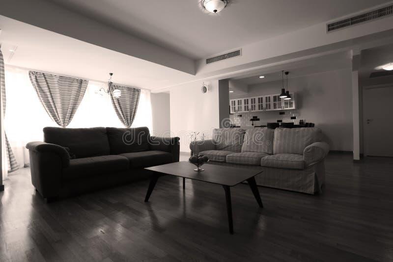 Sala de visitas enorme com cozinha aberta imagens de stock