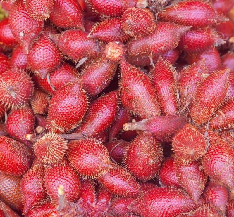 Salacca della frutta fotografia stock