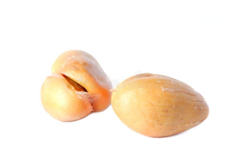 Salacca eller för zalacca tropisk frukt royaltyfri foto
