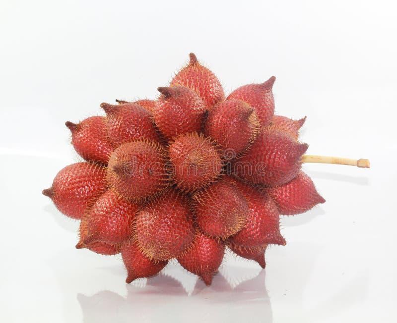 Salacca o zalaccafruit immagini stock libere da diritti