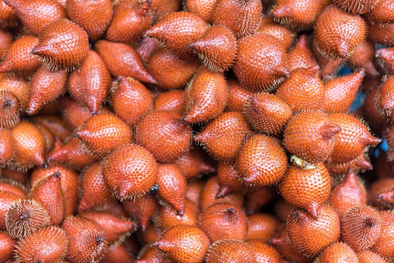 Salacca wallichiana is asia fruit at fruit market. Salacca wallichiana or zalacca is fruit have a pricker on skin in Thailand and asia fruit have a sweet can buy stock photo
