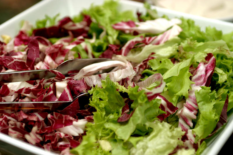 Salad. A fresh salad ready to be served stock images