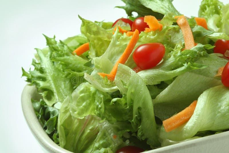 Salad. A Healthy Bowl of Salad
