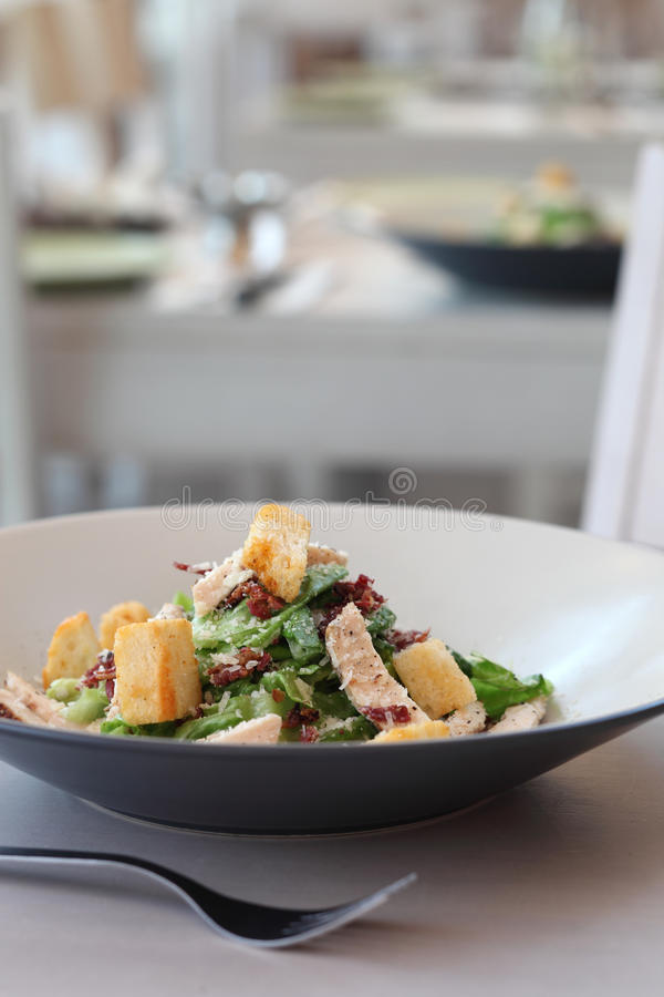 Download Salad stock photo. Image of table, dinner, lunch, cook - 16187414