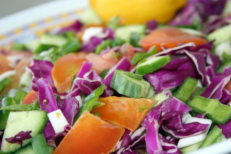 Salad. Close up of fresh vegetable salad dish royalty free stock image