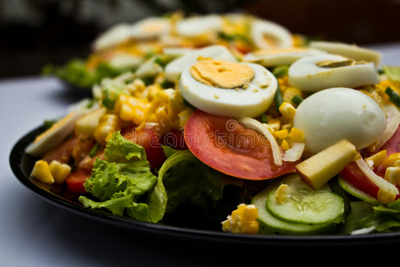 Download Salad stock photo. Image of setting, green, organic, lunch - 24401898