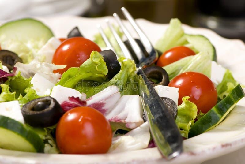 Download Salad stock image. Image of herbs, dinner, diet, olives - 2978819