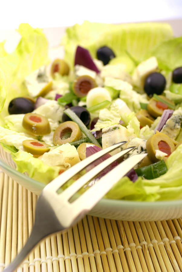The Salad. Fresh Salad Appetizer on the plate stock image