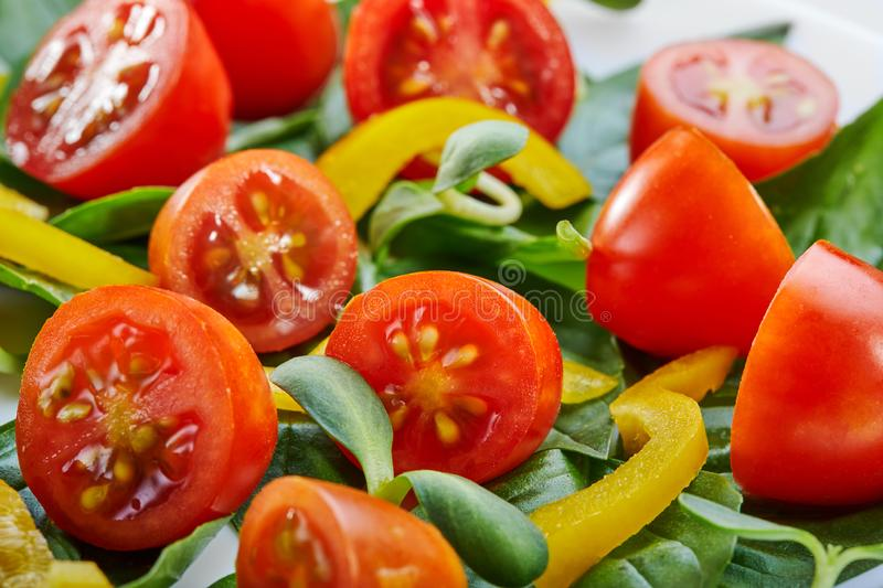 Salad with basil leaves, cherry tomatoes and bell pepper on a white plate. Close-up, selective focus stock images