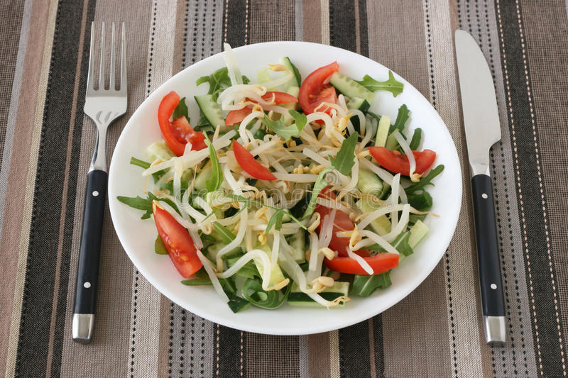 Download Salad with bean sprouts stock photo. Image of prepared - 19082354
