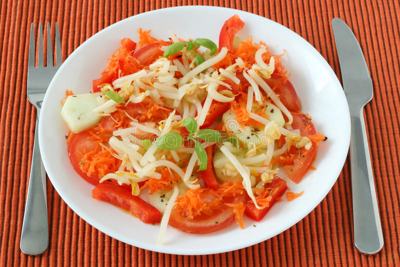 Download Salad with bean sprouts stock image. Image of vegetable - 21890521