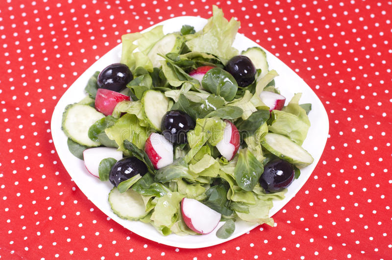 Salad with black olives and radish royalty free stock photo