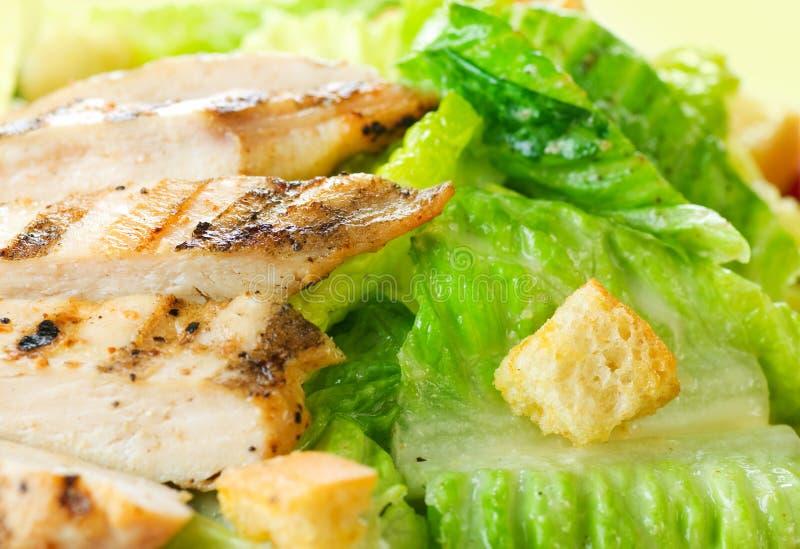 Salad Caesar royalty free stock photo