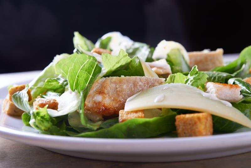 Salad ceaser stock photo