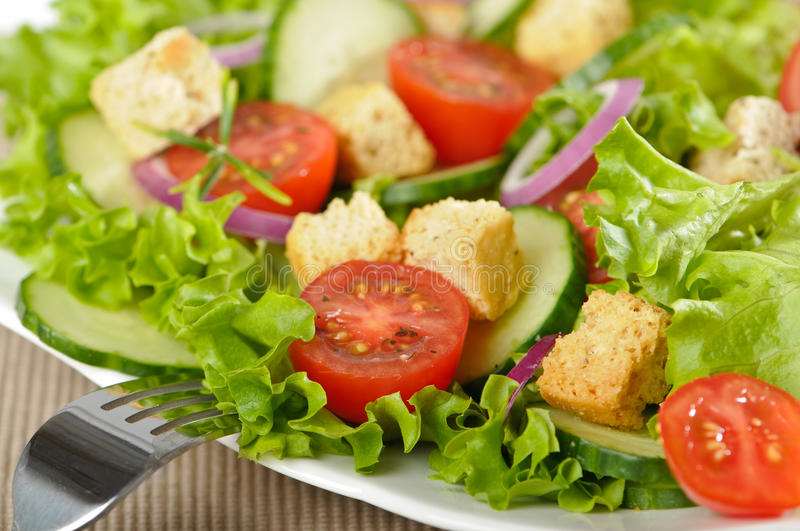 Download Salad With Croutons Stock Photo - Image: 10880630