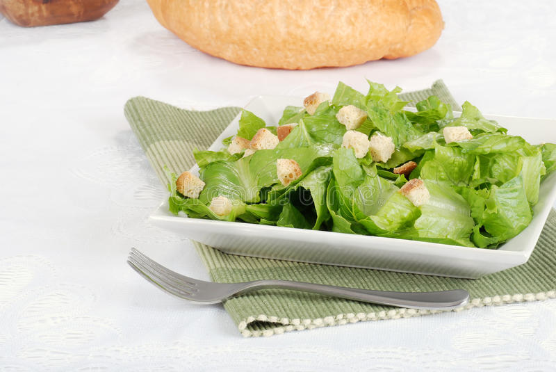 Download Salad with croutons stock image. Image of closeup, fork - 25281307