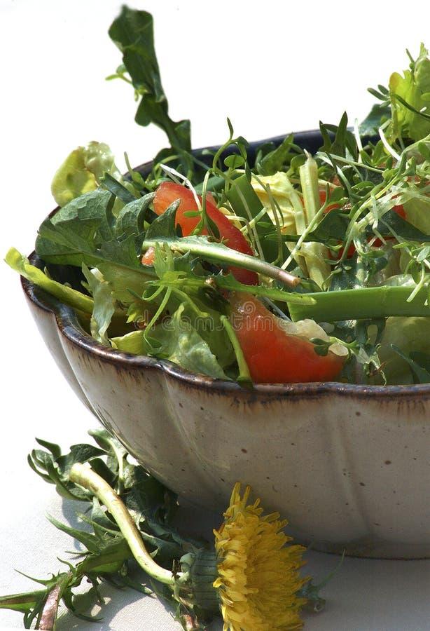 Download Salad With Dandelion Flower Stock Photo - Image: 2347550