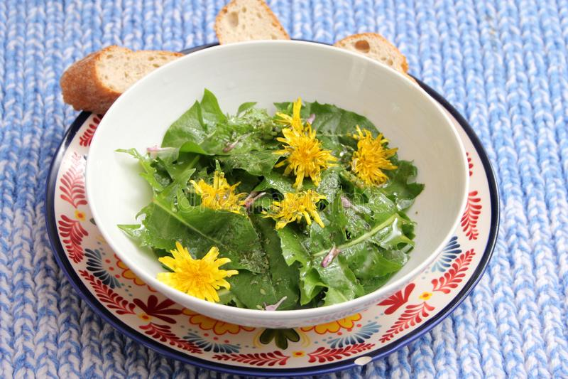 Salad of dandelion. A fresh salad of dandelion with yellow flowers stock photo