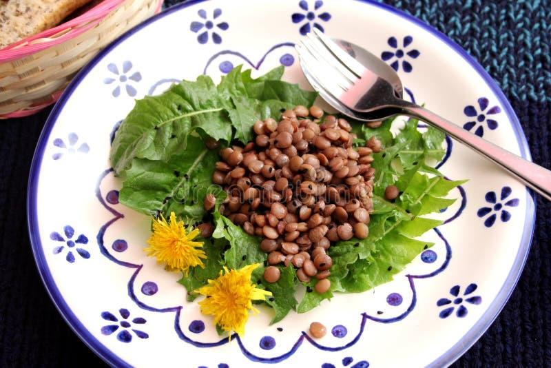 Salad of dandelion and lentils. A fresh salad of dandelion and lentils stock image