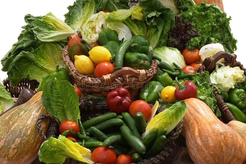 Download Salad days 2 stock image. Image of lettuce, chilli, vegetable - 34317