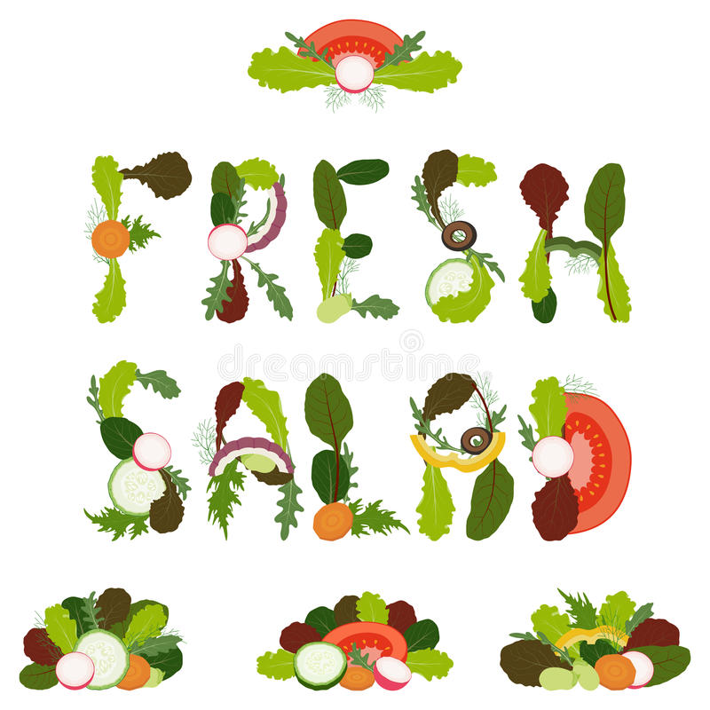 Download Salad decorations stock vector. Image of cooking, light - 29126833