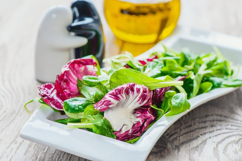 Salad diet for weight correction from Lollo Rosso salad leaves, watercress salad and other green herbs. Healthy eating concept royalty free stock photo