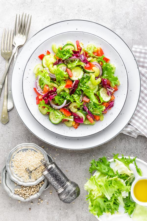 Salad Of Fresh Cucumber, Celery, Sweet Pepper, Frize Lettuce, Red ...