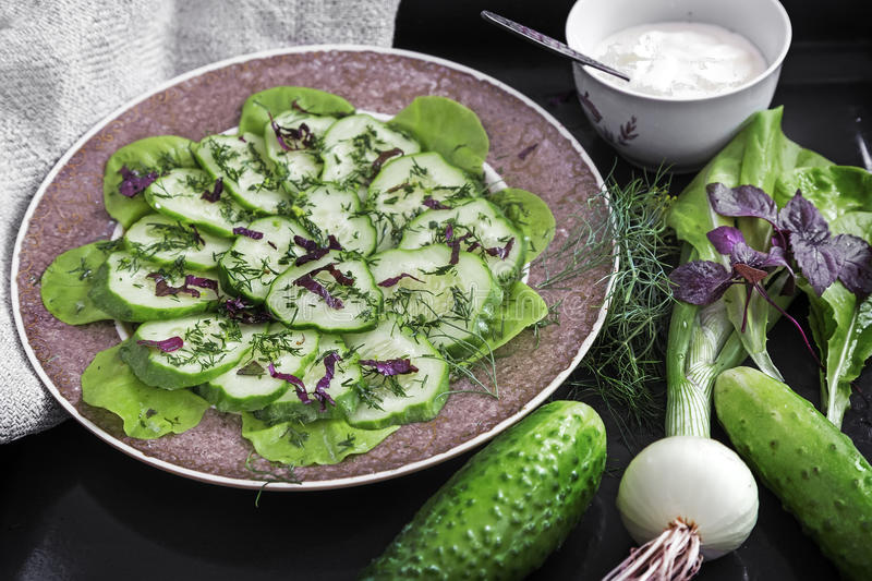 Salad from fresh cucumbers and greens. royalty free stock photo