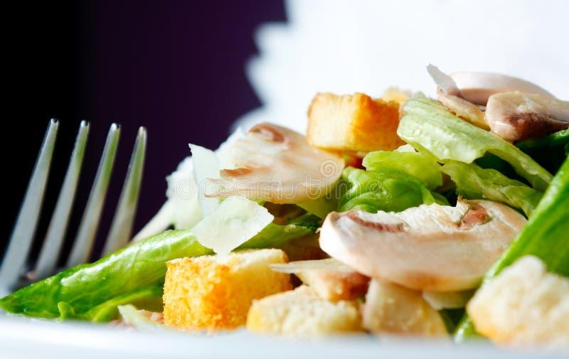 Salad of fresh mushrooms royalty free stock photos