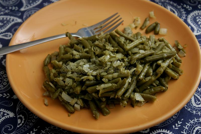Salad of green beans. A salad of green beans with onions, vinegar and oil stock image