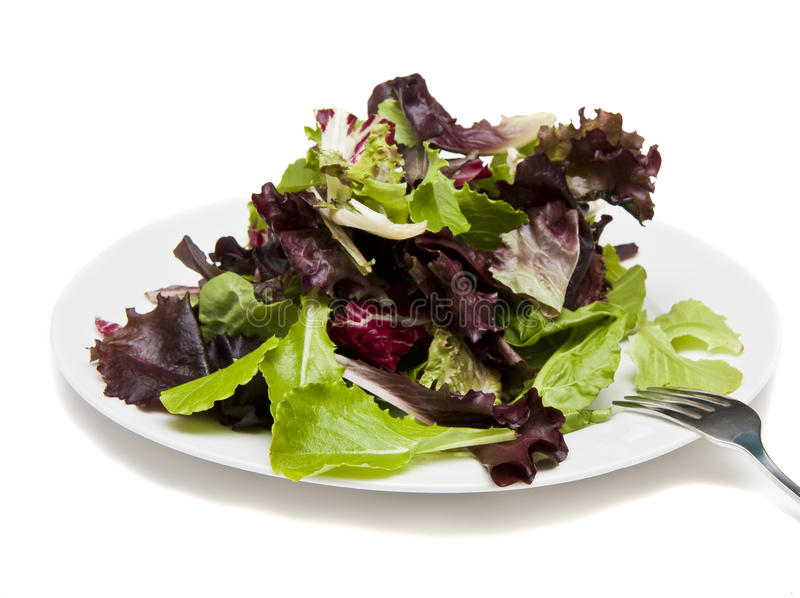 Salad Greens on White Plate with fork royalty free stock photos