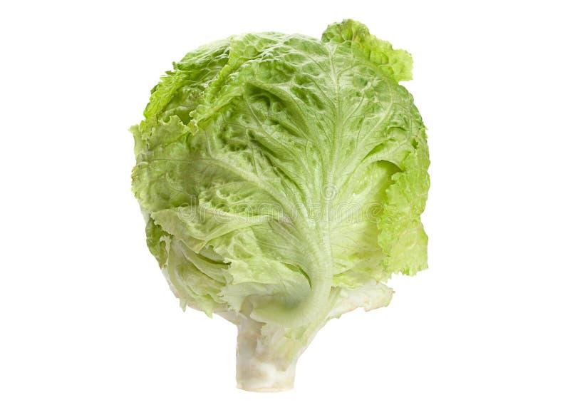 Salad iceberg head. Closeup isolated on white royalty free stock image
