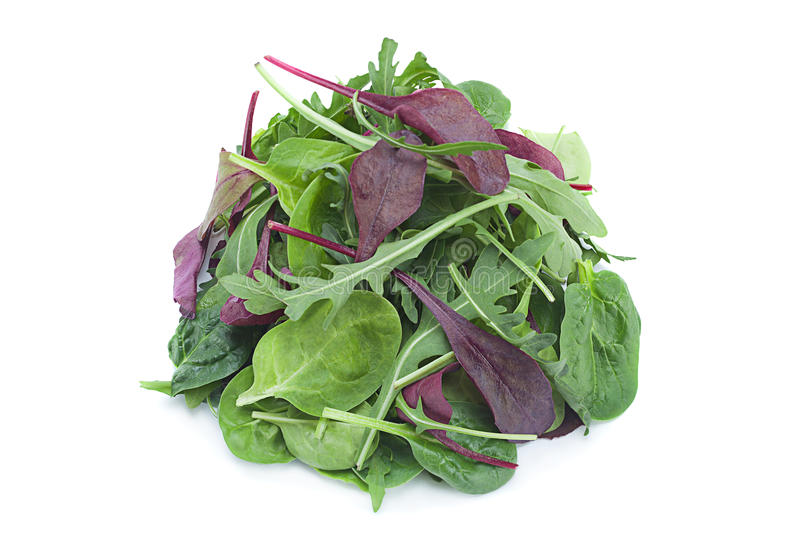Salad leaf mix stock photos