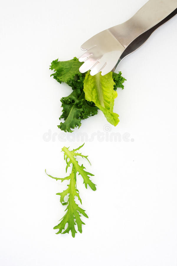 Salad Leaves Falling From Silver Tongs Stock Images