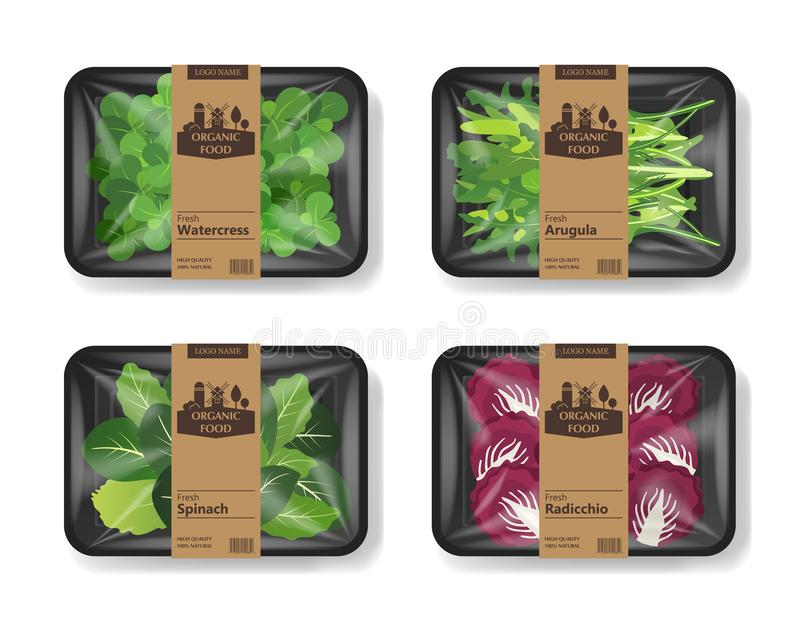 Salad leaves with plastic tray container with cellophane cover. Retro design set. Mockup template for your salad design. Plastic food container. Vector royalty free illustration