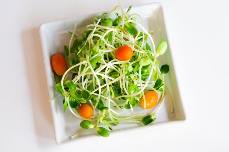 Download Salad mix stock image. Image of white, food, vegetarian - 40363377