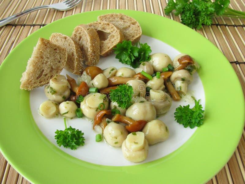 Download Salad With Mushrooms Stock Photos - Image: 19948673