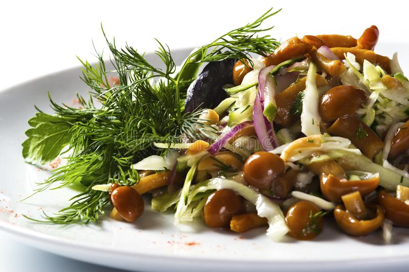 Salad with mushrooms and vegetables royalty free stock photography