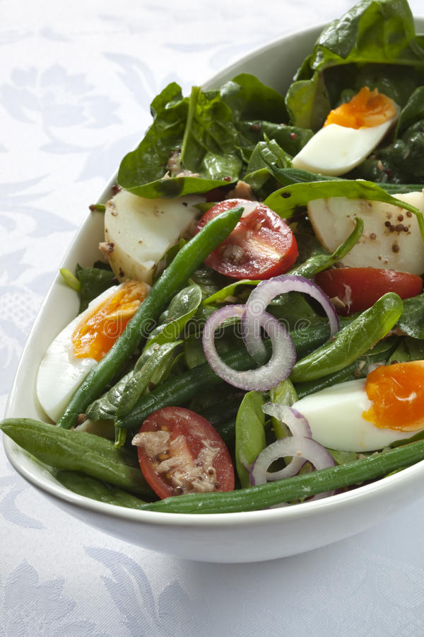 Download Salad Nicoise stock photo. Image of mustard, string, potatoes - 14860844
