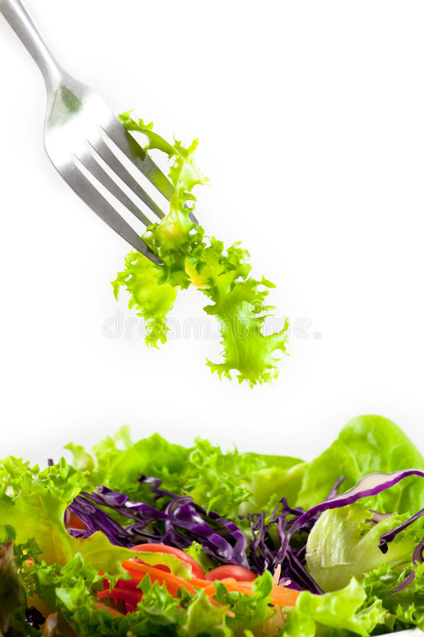 Free Salad On Fork Stock Photography - 18424452